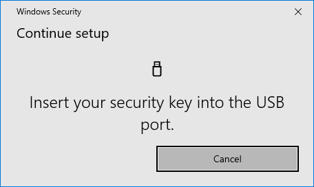 Insert your security key into the USB port